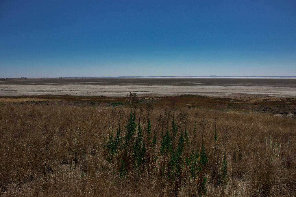 Lac Corangamite (2)