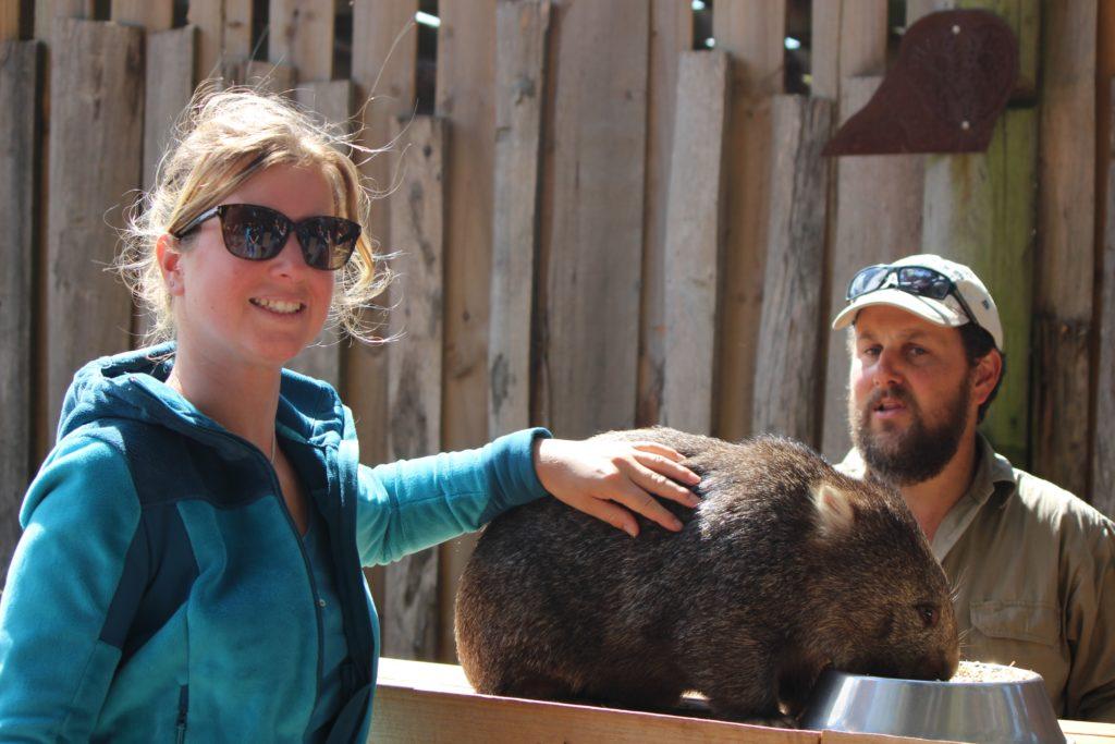 Laura caressant le Wombat
