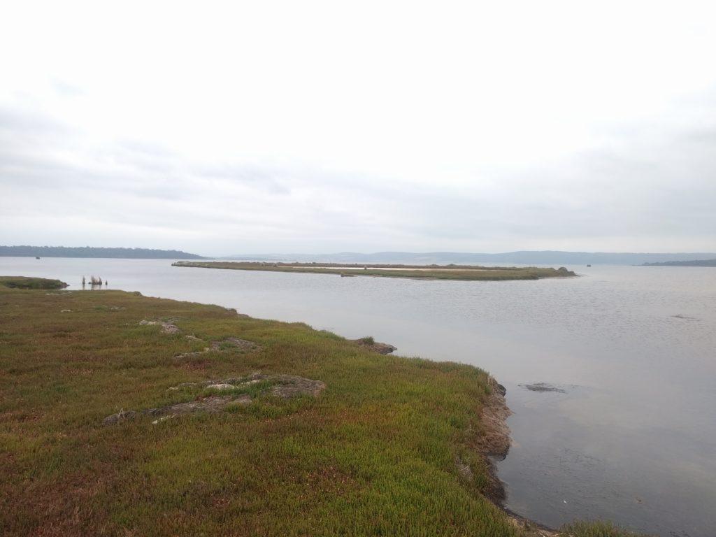 Moulting Lagoon - Lagon de mue