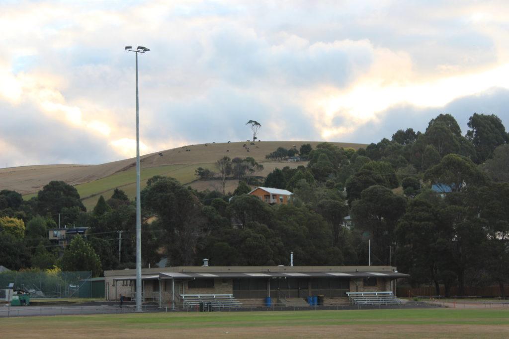Petite colline avec son arbre et ses moutons qui surplombe Forth