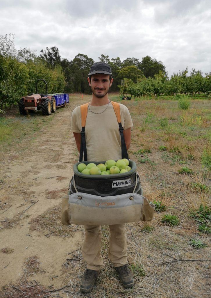 Un seau de pommes bien rempli, c'est lourd :)