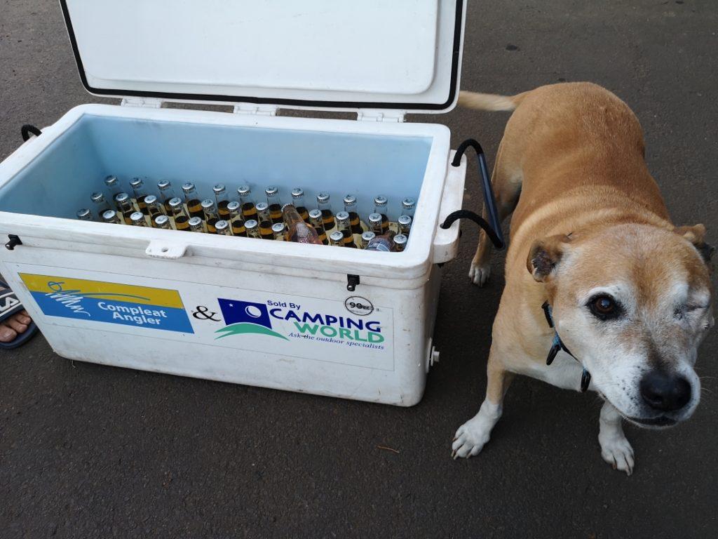 La réserve de bière rudement bien surveillée par Tobby