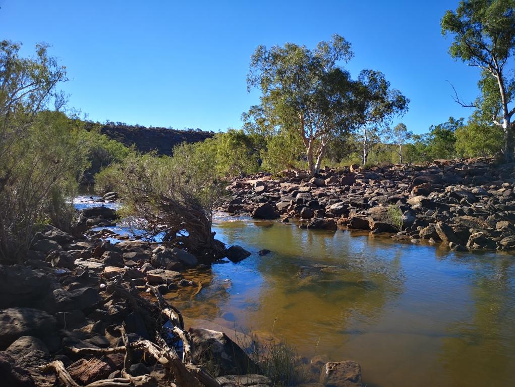 La rivière Murchison