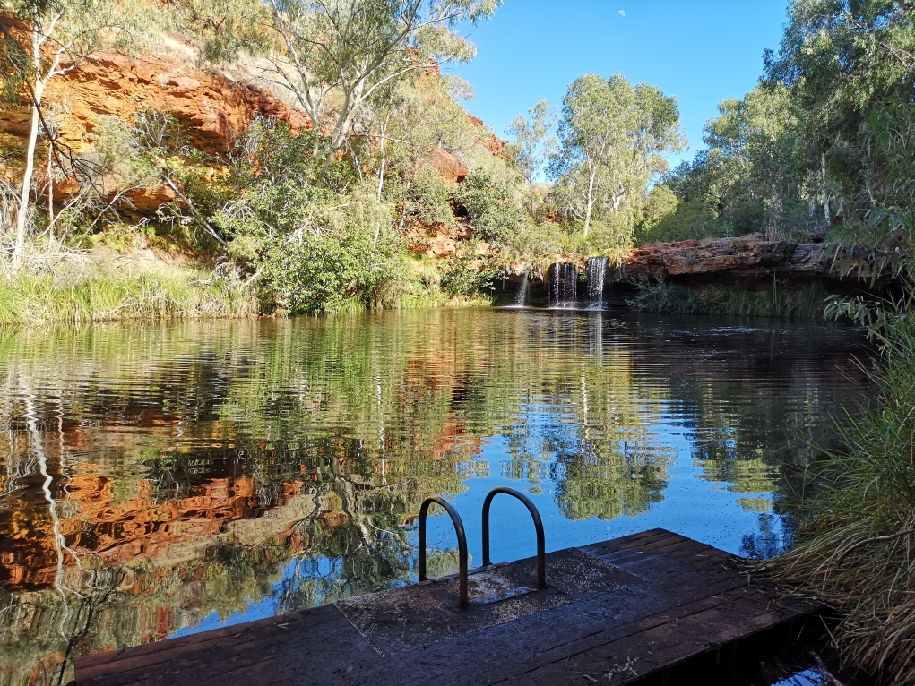 Le Fern Pool