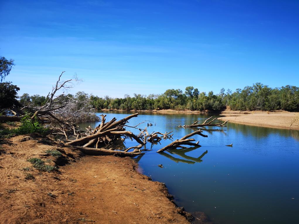 Fitzroy River, il y a sûrement des crocos dans ces eaux calmes