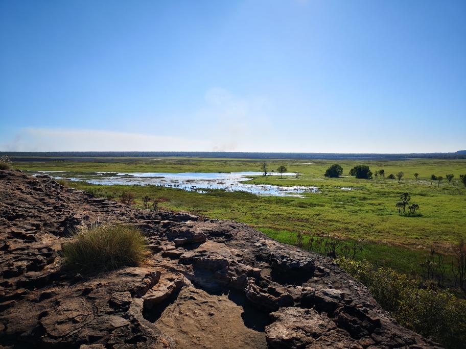 Vue sur les plaines marécageuses