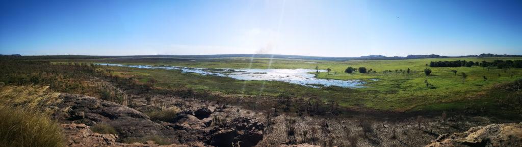 Panorama des Wetlands depuis Ubirr