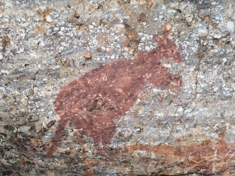 Représentation aborigène d'un kangourou