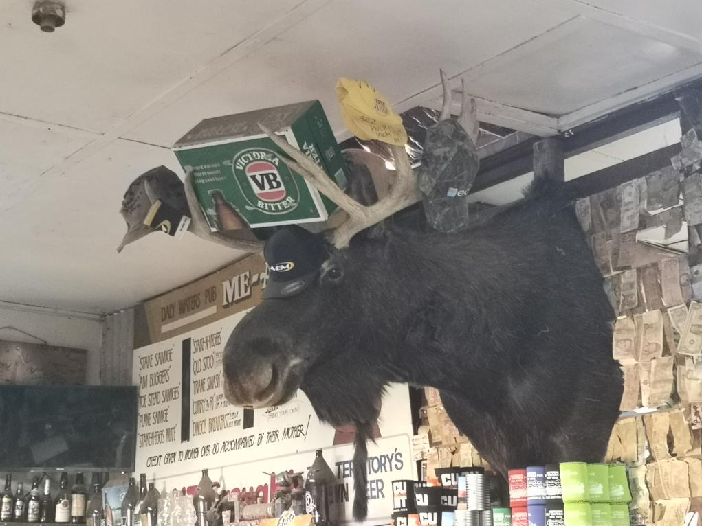 L'une des décoration particulière du Daly Waters Pub