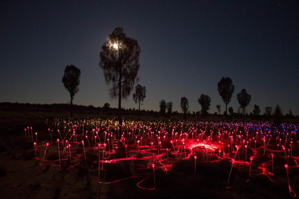 Les réseaux de fibre de verre donnent un aspect particulier rappelant une ville illuminée de nuit vue du ciel