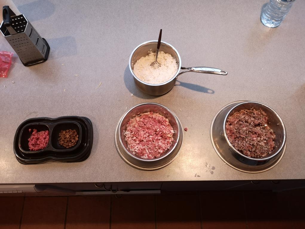 Les enfants à table! Chacun sa gamelle préparée avec soin!