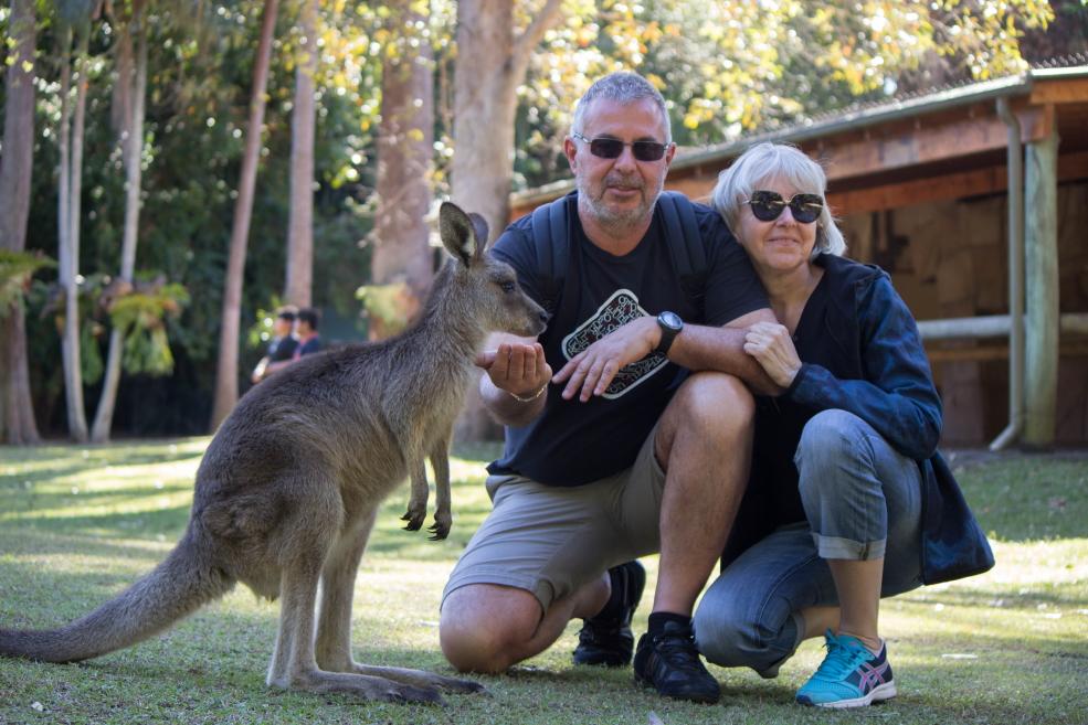 Un kangourou au milieu des kangourou. Mais là ce sont les parents de Laura.