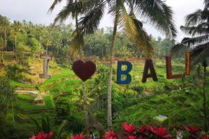 I Love Bali devant les rizières de Tegalalang