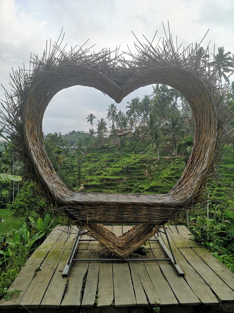 Un coeur en osier pour prendre des photos devant les rizières