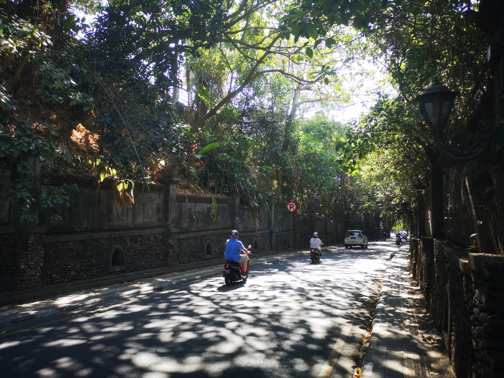Rue principale d'Ubud en direction du Nord