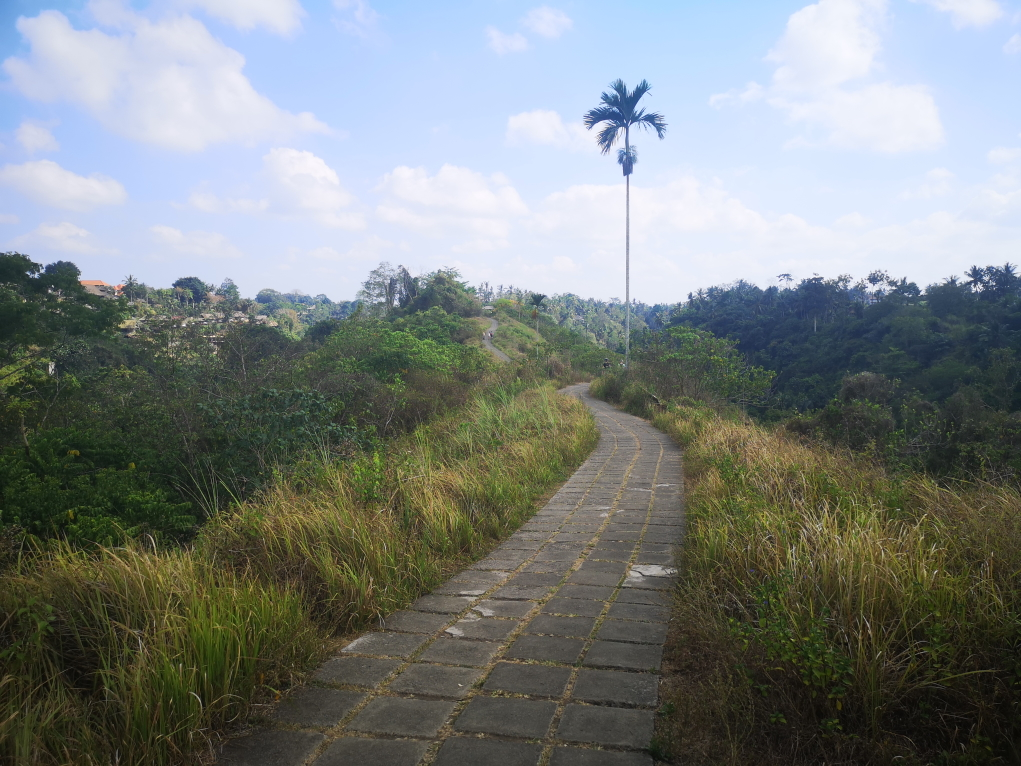La Campuhan Ridge Walk