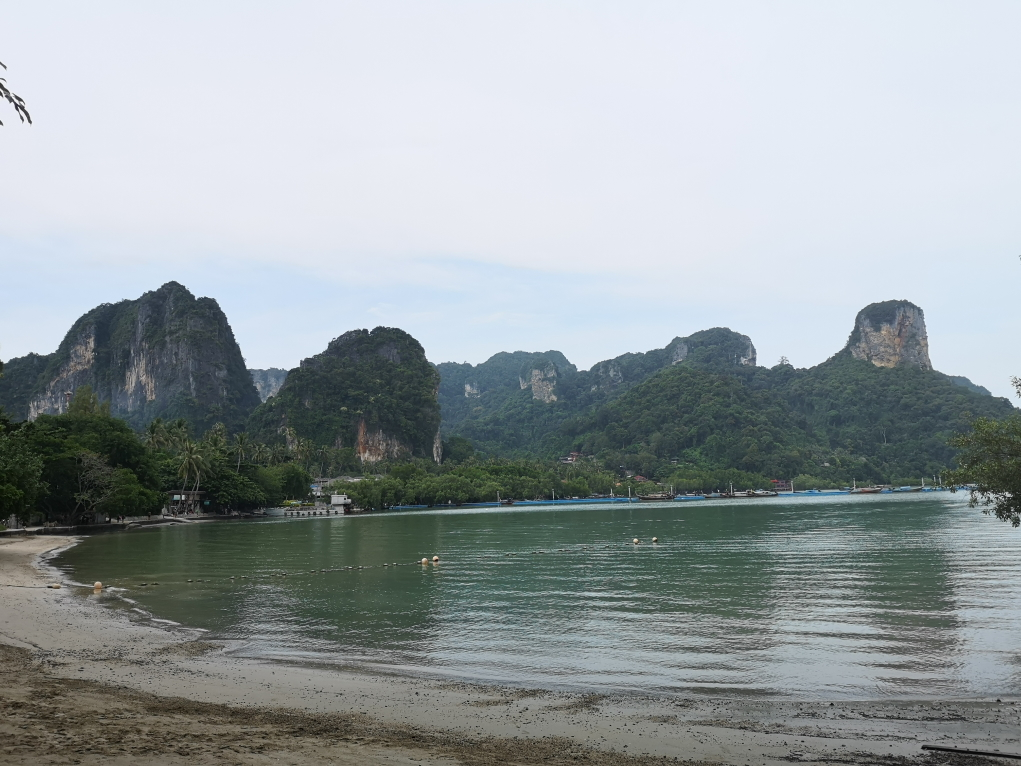 La plage côté mangrove