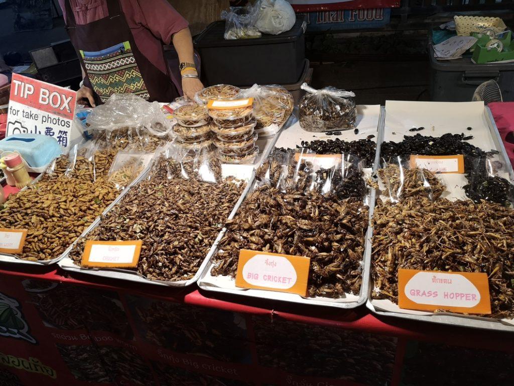Des insectes grillés. Pour les touristes. Je n'ai jamais vu personne en manger. D'ailleurs si on veut prendre en photo, il faut laisser un pourboire. Je me demande s'ils ne gagnent pas plus d'argent avec ça