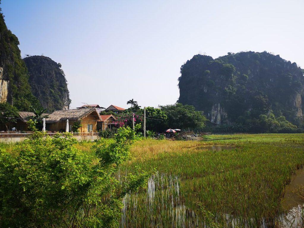 le Tam Coc Sunshine Homestay vu depuis les rizières voisines