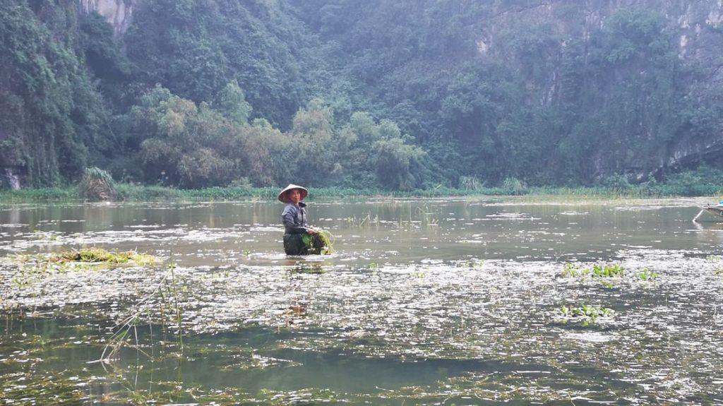 Une locale en train de travailler dans la rivière