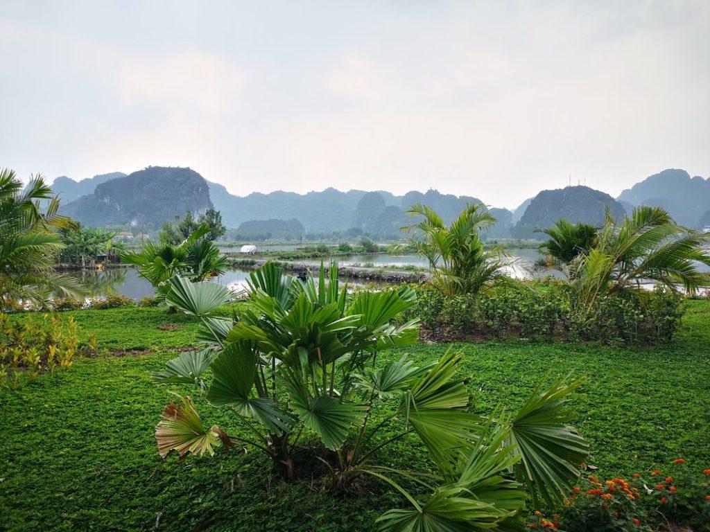 Vue sur les rizières en direction de la pagode