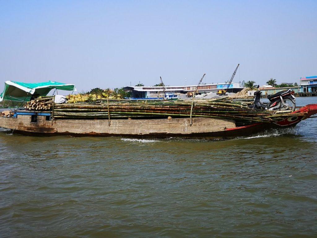 Transport de bambous