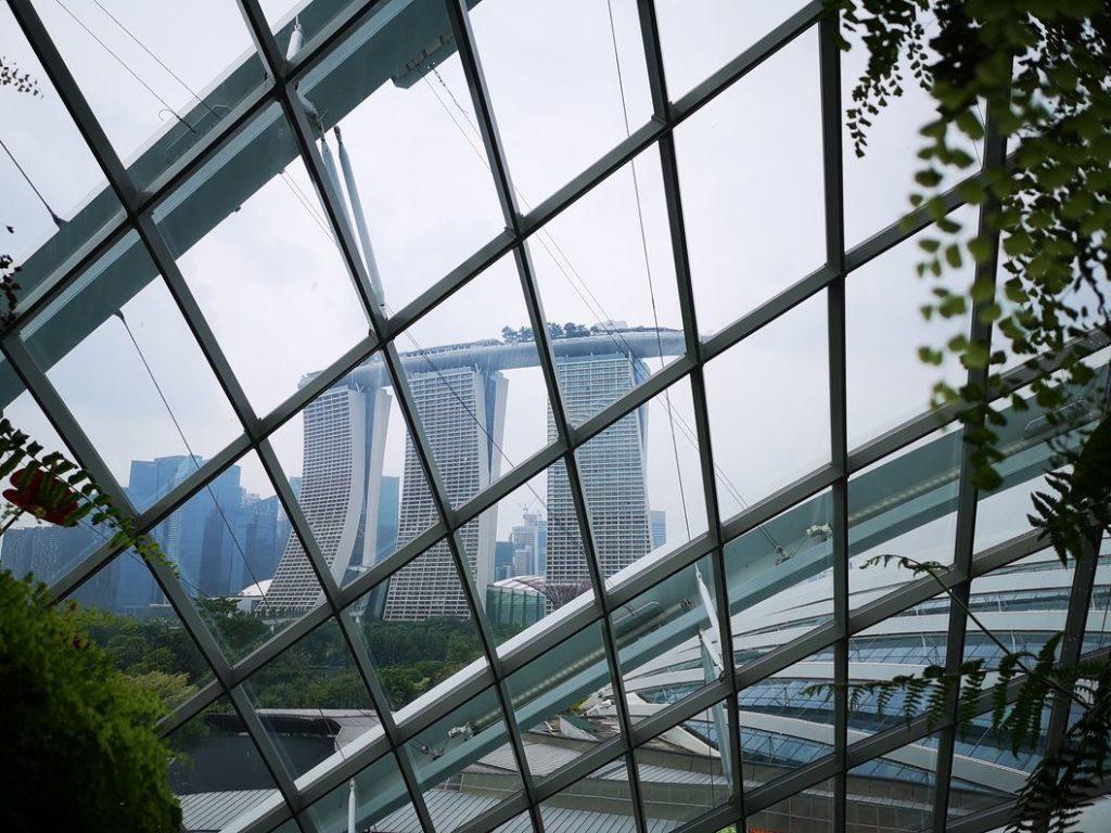 Vue du Marina Bay Sands depuis les hauteurs de la Cloud Forest