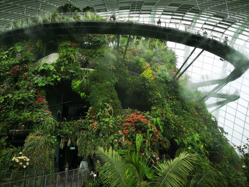 La Cloud Forest