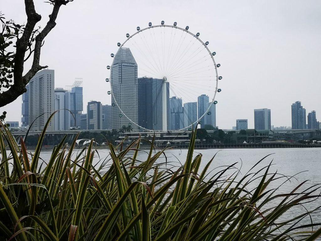 Vue sur la grande roue de Singapour depuis les Gardens by the Bay