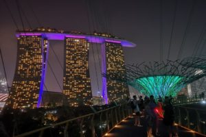 Autre photo du Marina Bay Sands depuis la Skyway lors du Garden Rhapsody