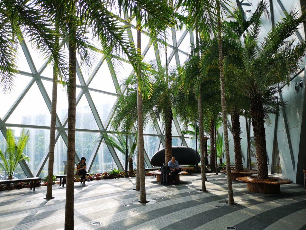Endroit paisible dans The Jewel, le centre commercial au cœur de l'aéroport de Singapour